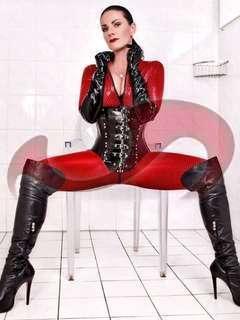 Bild zu Mistress Maxim